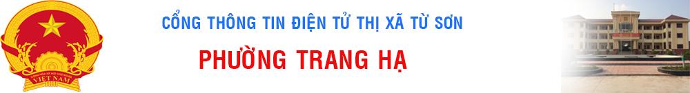 banner trang ha